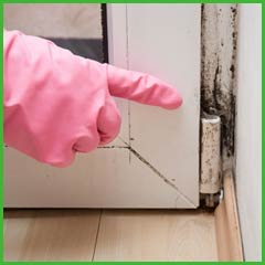 Fort Lauderdale Water & Mold Damage Fort Lauderdale, FL 954-374-6206